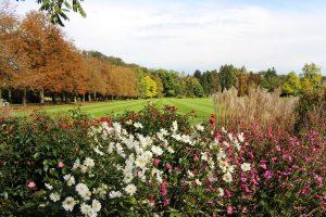 Foto: Arboretum Volčji Potok